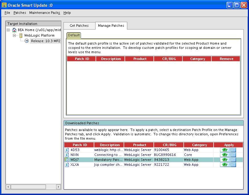 WebLogicGC11Patch_12.JPG