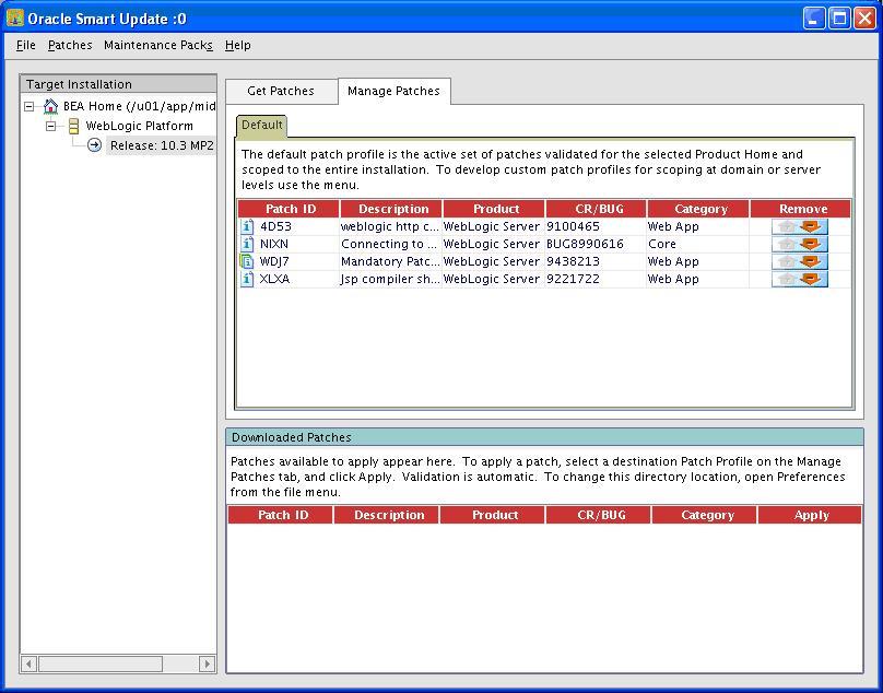 WebLogicGC11Patch_15.JPG